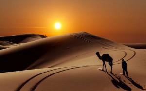 Sahara  Crédit: www.atlas-sahara-trek.com