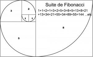 La suite de Fibonacci  Crédit: sandrine-buzin.com