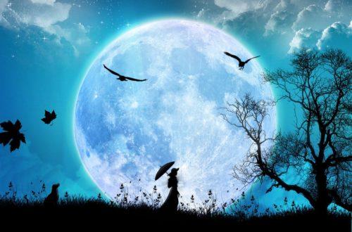 Article : Pleine lune